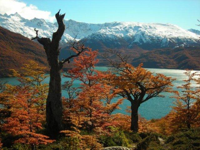 Bem-vindo ao paraíso do trekking: El Chaltén - Lago del Desierto