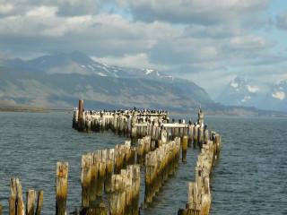 Transporte Privado Terminal Rodoviário Puerto Natales - Hotel Puerto Natales