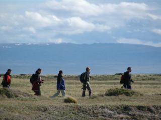 Ticket ônibus regular Punta Arenas -  Puerto Natales