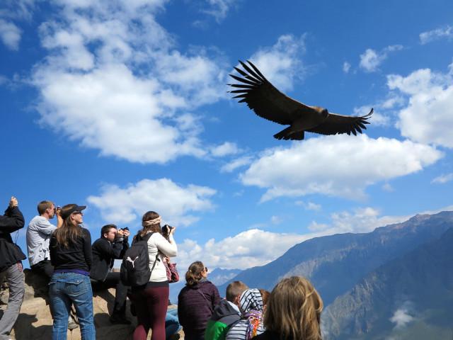 Mirante dos Condores: Visitando o cânion mais profundo do mundo!