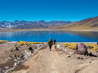 Salar do Atacama, Lagunas Altiplanas e Piedras Rojas com Almoço