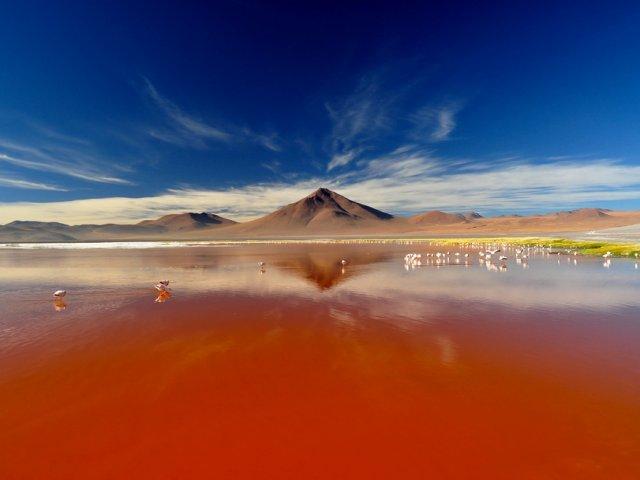 Excursão à Laguna Colorada: Você acredita que tem um lago vermelho?