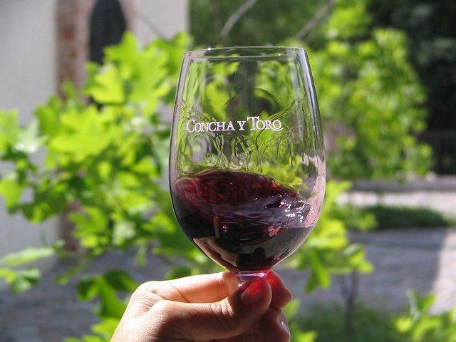 Degustação de vinhos em uma Vinícola Tradicional